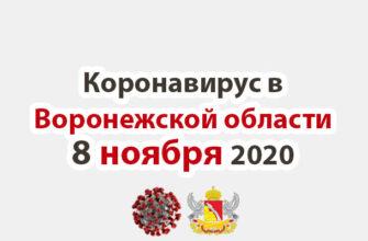 Коронавирус в Воронежской области на 8 ноября 2020 года