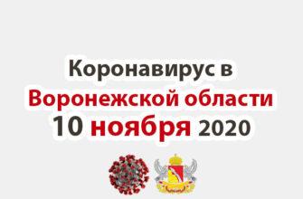 Коронавирус в Воронежской области на 10 ноября 2020 года