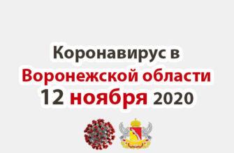 Коронавирус в Воронежской области на 12 ноября 2020 года