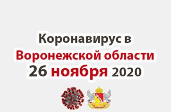 Коронавирус в Воронежской области на 26 ноября 2020 года