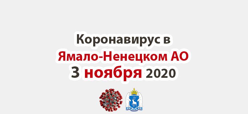Коронавирус в Ямало-Ненецком АО 3 ноября 2020
