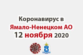 Коронавирус в Ямало-Ненецком АО 12 ноября 2020