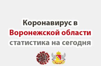 Коронавирус в Воронежской области статистика на сегодня