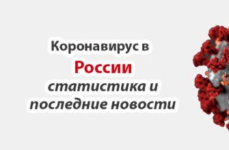 Коронавирус в России статистика на сегодня