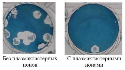 Рисунок 2. Сравнительный анализ проб на гемолитические бляшки